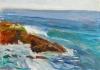 La Jolla Cove 008