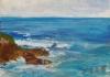 La Jolla Cove 009