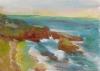 La Jolla Cove 019