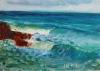 La Jolla Cove 046