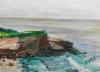 La Jolla Cove 069