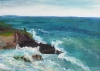 La Jolla Cove 006