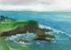 La Jolla Cove 026