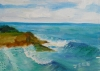 La Jolla Cove 029