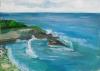 La Jolla Cove 033