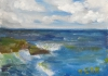 La Jolla Cove 037