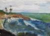 La Jolla Cove 039
