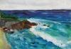 La Jolla Cove 043