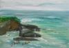 La Jolla Cove 074
