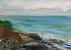La Jolla Cove 076