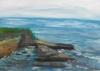 La Jolla Cove 079