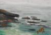 La Jolla Cove 081