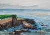 La Jolla Cove 087