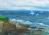 La Jolla Cove 092